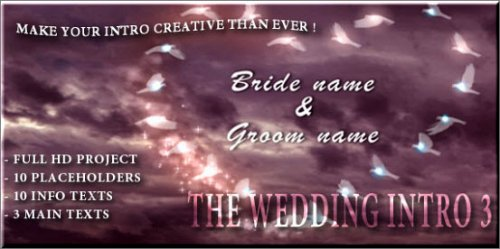 Videohive The Wedding Intro 3 - After Effects Project