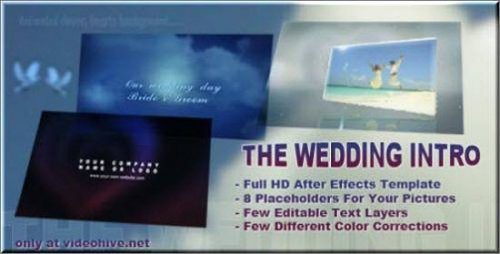 Videohive After Effects Project - The Wedding Intro