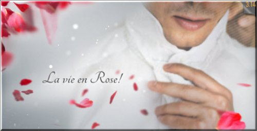 La Vie en Rose - Wedding Template - Projects for After Effects