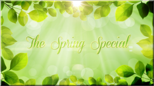 Videohive The Spring Special - Promo Pack