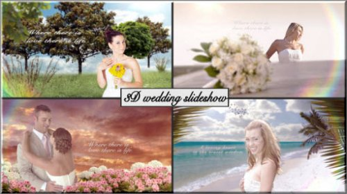 After Effect Project - 3D Wedding slideshow