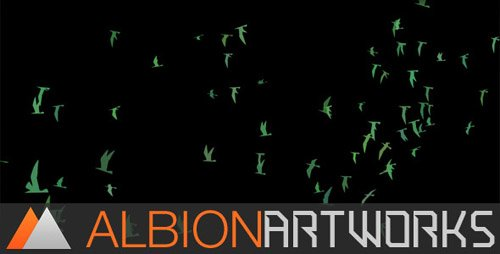 Flocking Bird Generator - Project for After Effects (Videohive)