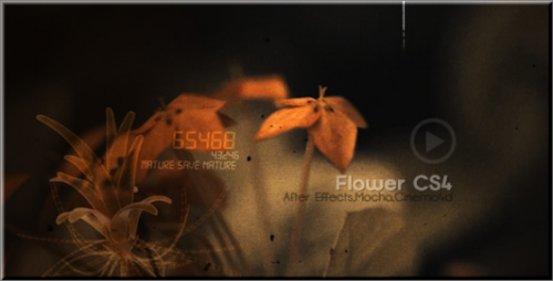 After Effects Project  - Flowers CS4