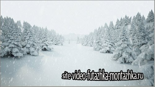 iStockVideo Winder landscape with falling snow