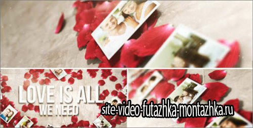 After Effects Project -  Rose Petals Heart - Photo Gallery