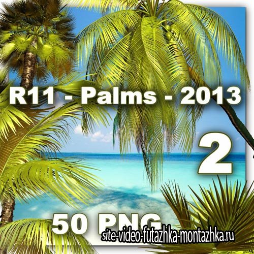 Palms 2 PNG Files