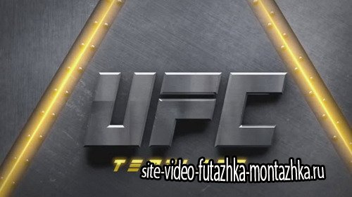 UFC intro - Project for After Effects