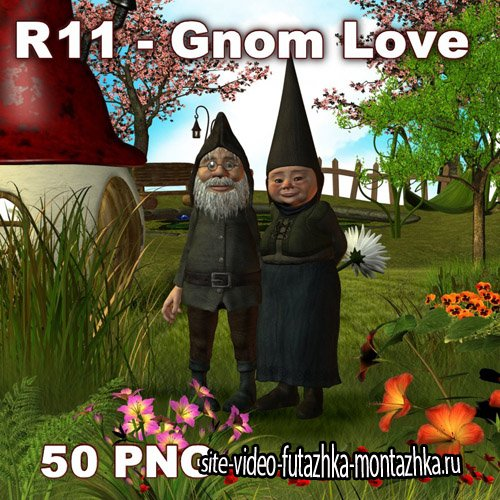 Gnom Love PNG FIles