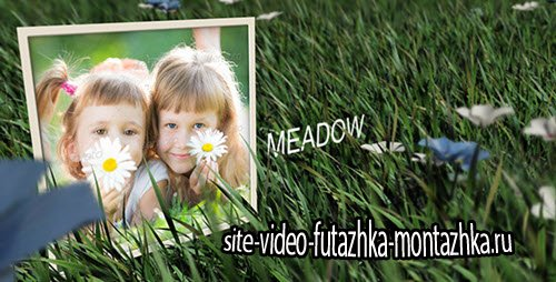 After Effect Project - Meadow