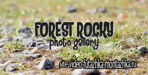 After Effect Project - Forest Rocky Photo Gallery
