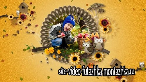 The Colours of Autumn - проект для ProShow Producer®