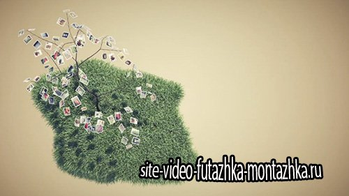 Picture Tree Photo Gallery - Project for After Effects (Videohive)