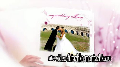 Wedding Photo Album Live Video - Project for After Effects (REVOSTOCK)