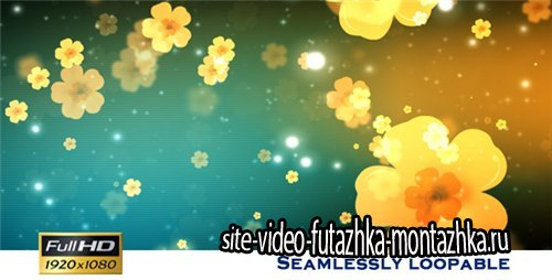 Flower Show - After Effects Motion Graphics (Videohive)