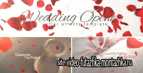 Wedding Opener 10137243 - Project for After Effects (Videohive)