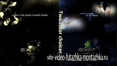 Gold Particle and Memories Typography - Project for After Effects (Videohive)