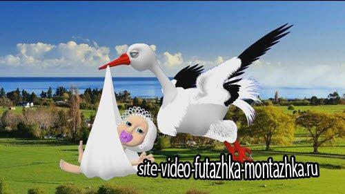 футаж HD - Аист несет малыша