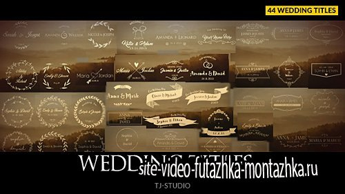 Wedding Titles - Project for After Effects (Videohive)