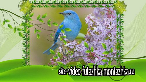 Проект ProShow Producer - Waiting for Spring