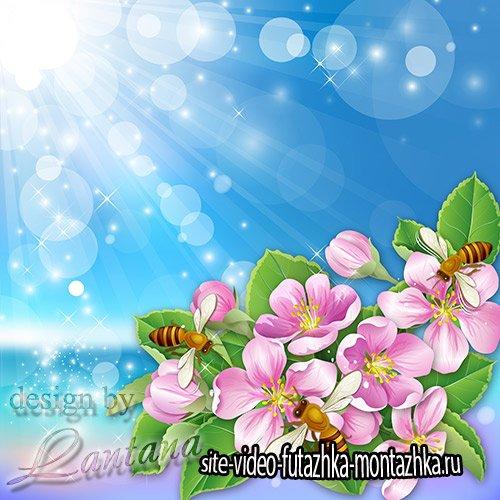 PSD исходник - Яблони в цвету, весны творенье