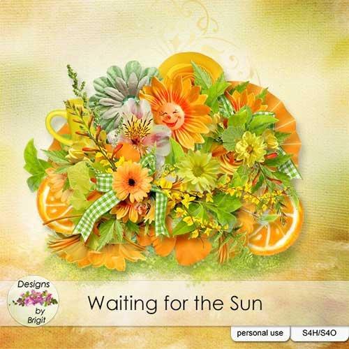 Цветочный скрап-набор - В ожидании солнца