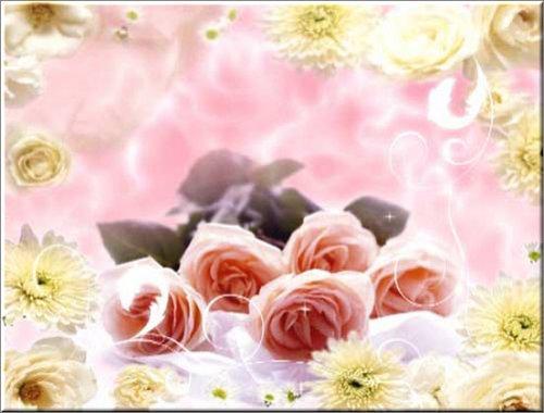 футаж - Фон с букетом роз