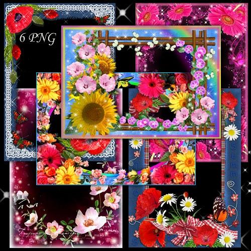 Набор ярких цветочных рамок для летних фотографий