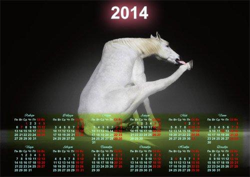 Календарь на 2014 год - Белая прикольная лошадка