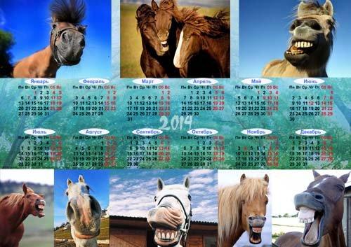 Календарь на 2014 год - Прикольные лошади