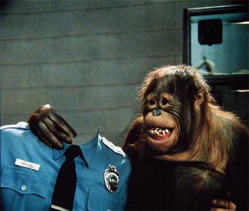 В форме полицейского с обезьяной - шаблон psd