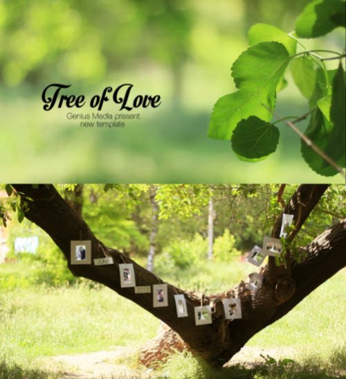 After Effects Project - Tree Of Love