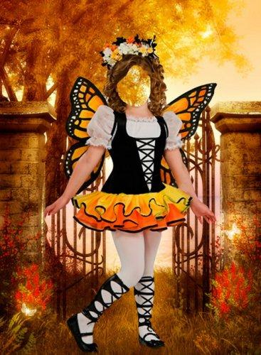 Шаблон для фотошопа – Осенняя бабочка