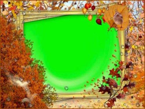 футаж - Золотая осень (на хромакее)