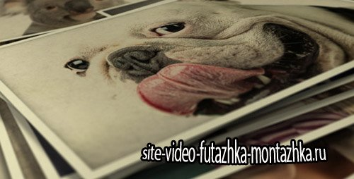 Photo Gallery Smile To Life - Project for After Effects (Videohive)