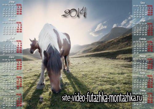 Красивый календарь - Кони пасутся на лужайке