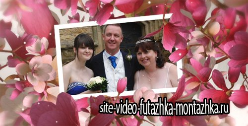 Beautiful Wedding Moments - Project for After Effects (Videohive)