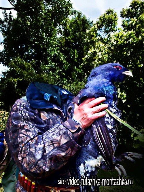 Мужской шаблон - охотник с орлом