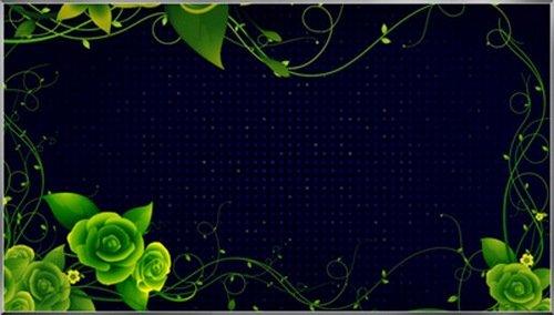 Футаж-Цветение в ночи