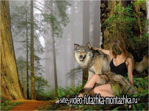 Шаблон для фотомонтажа - С волком в обнимку