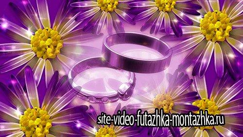 Свадебные кольца на фоне ромашек - HD футаж
