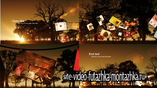 After Effect Project - Photo Tree