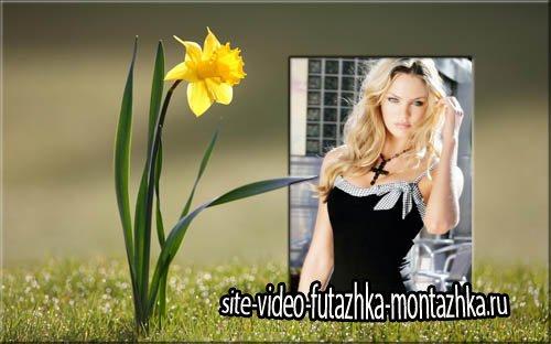 Рамка для фотографии - Желтый нарцисс