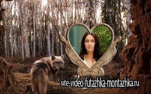 Рамка для фотомонтажа - Волк в лесу возле озера