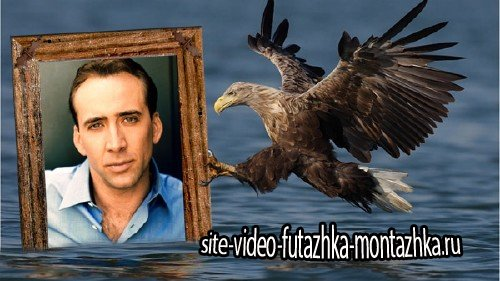 Фоторамка для фотошопа - Орел на охоте