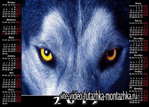 На 2015 год календарь - Волчий взгляд
