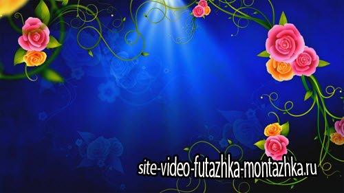 футаж-видео заставка с Розами