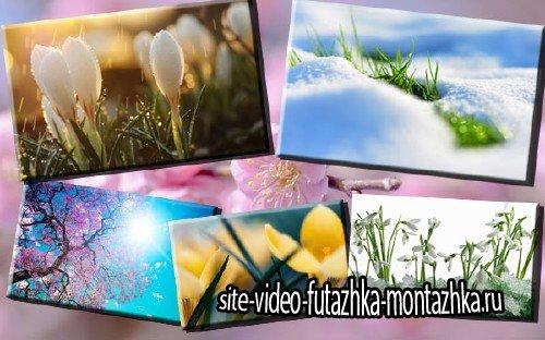 Клипарт фото - Пришла весна