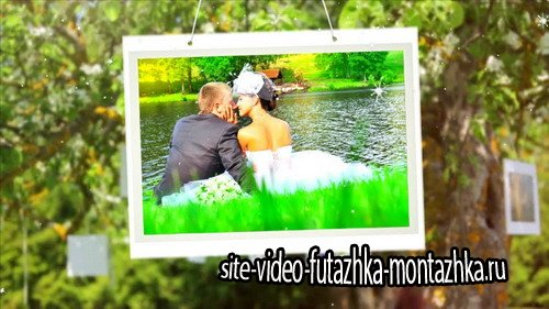 My Wedding Photo - Project for Proshow Producer