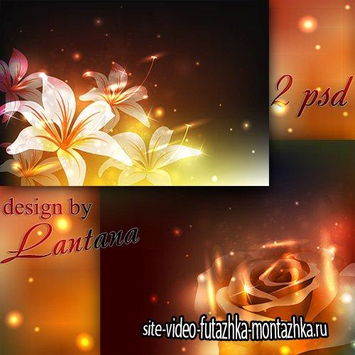 Многослойные фоны - В ночи мерцают лилии и розы