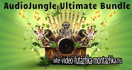 AudioJungle Ultimate Bundle